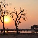 Botswana Sunset2